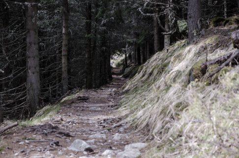 Tatras National Park